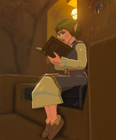 File:Breath of the Wild Hotel Oasis Tauma (Gerudo Town).png