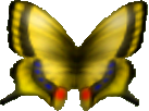 File:Butterfly (Ocarina of Time).png