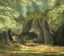 Wald von Phirone