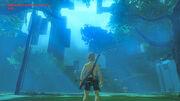 Trial of the Sword (Breath of the Wild)