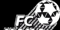 芬蘭聯賽球會會徽