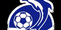 以色列聯賽球會會徽