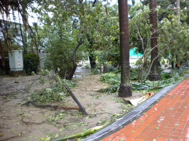 檔案:凡那比颱風的摧殘-南台科技大學4.jpg