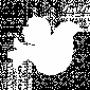 File:Wolfgang birthmark.png