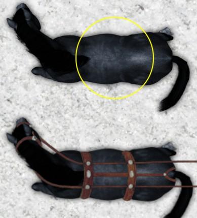 Black Plague - Token - Horse Black