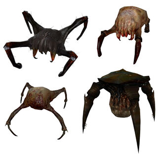 All the types of headcrabs, and a Gornarch above the normal headcrab