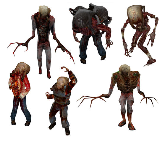 File:All Headcrab Zombies.jpg