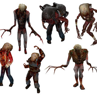All the types of Headcrab zombies, from left to right Headcrab zombie (Half Life 1), Poison zombie, Fast zombie, Headcrab zombie in (Half Life 2), Zombine and Gonome