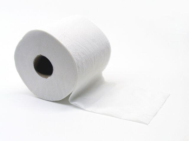 File:Toiletpapier (Gobran111).jpg