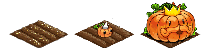 Pumpking stages