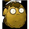 Wallnut cracked2-1-