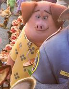 Frantic Pig Cameo