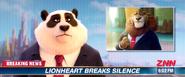 Panda-discuss-lionheart