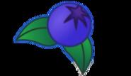 Blueberry Transparent