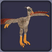 Protarchaeopteryx2