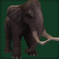 File:Sinomastodon.png
