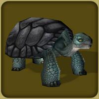 File:Gaint Tortoise.JPG