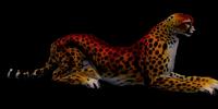 Dark Yellow Cheetah