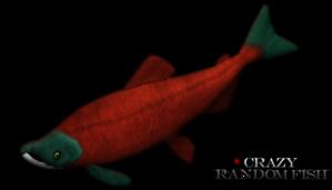 File:Sockeye-salmon-3166947o96.png