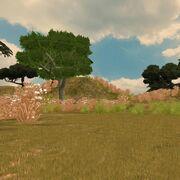 Preview savanna