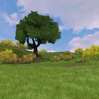 Preview temperategrassland
