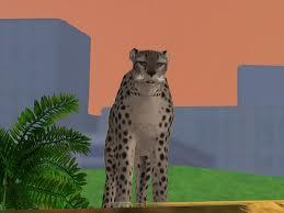 File:Clouded Leopard.jpg