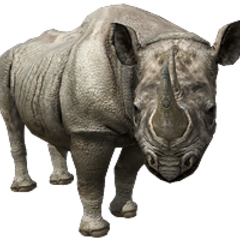 Black Rhino remake.