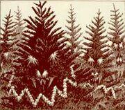 Christmas tree monster