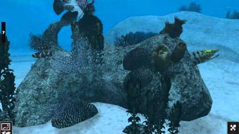Animated Reef Ingame