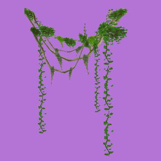 how to download vines online