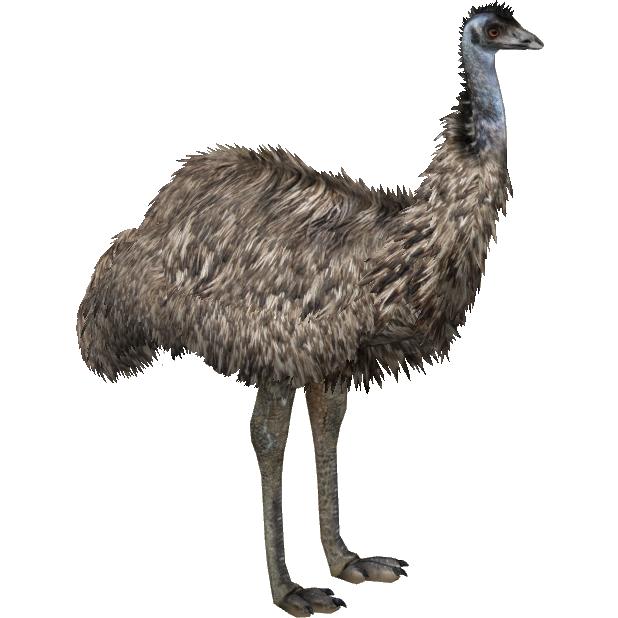 Emu Eryel Amp Maximilian Zt2 Download Library Wiki
