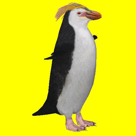 Royal Penguin Samuel Zt2 Download Library Wiki