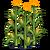 Cornstalks-icon