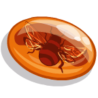 AmberInsects Bee-icon