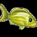 ColorfulFish Grunt Fish-icon.png