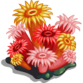 SeaLife Sea Anemones-icon
