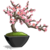 Bonsai Cherry Tree-icon