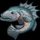 Sea Bass-icon