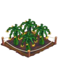 Dragonfruit Crop 3-icon.png