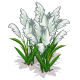 Pampas 2-icon