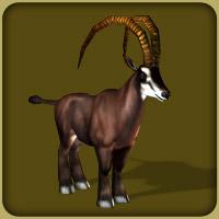 File:Giant Sable Antelope.jpg