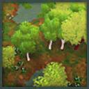 Icon temperateforest
