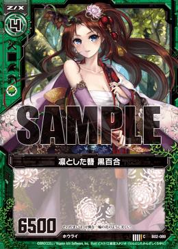 B02-089 Sample