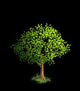 File:Oak Tree 3.png